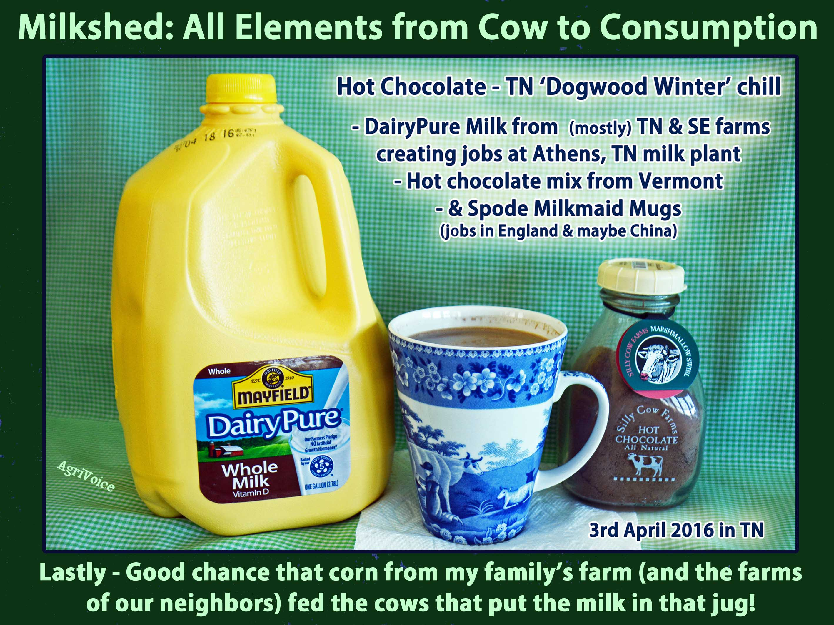 00_Milkshed_DairyPure_AgriVoice_F