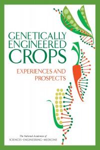 00_GMO_Report_Cover