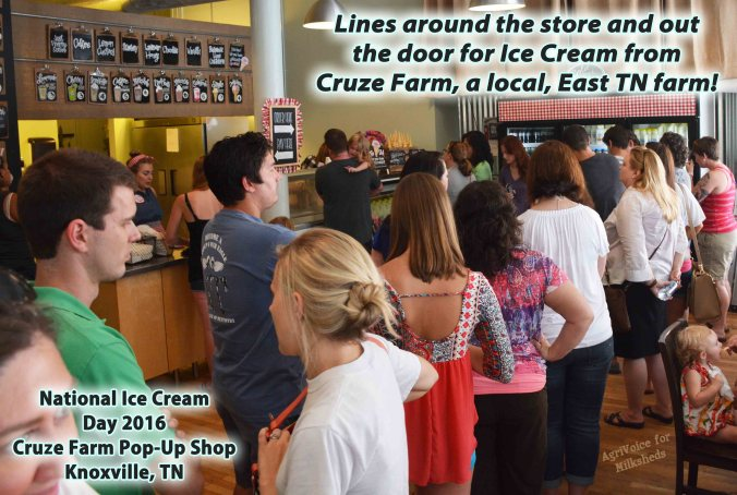 1270_Cruze_Store_Lines_Milksheds_Ice_Cream_Day_F