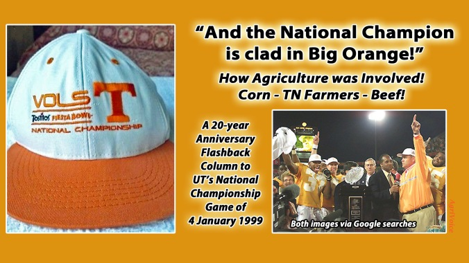 00000_4_vols_national_championship_blog_2_