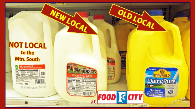 44_Food_City_Southern_Dairies_Local_FC_A_S
