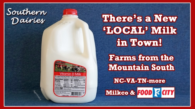 4744_Food_City_Southern_Dairies_Milksheds_S